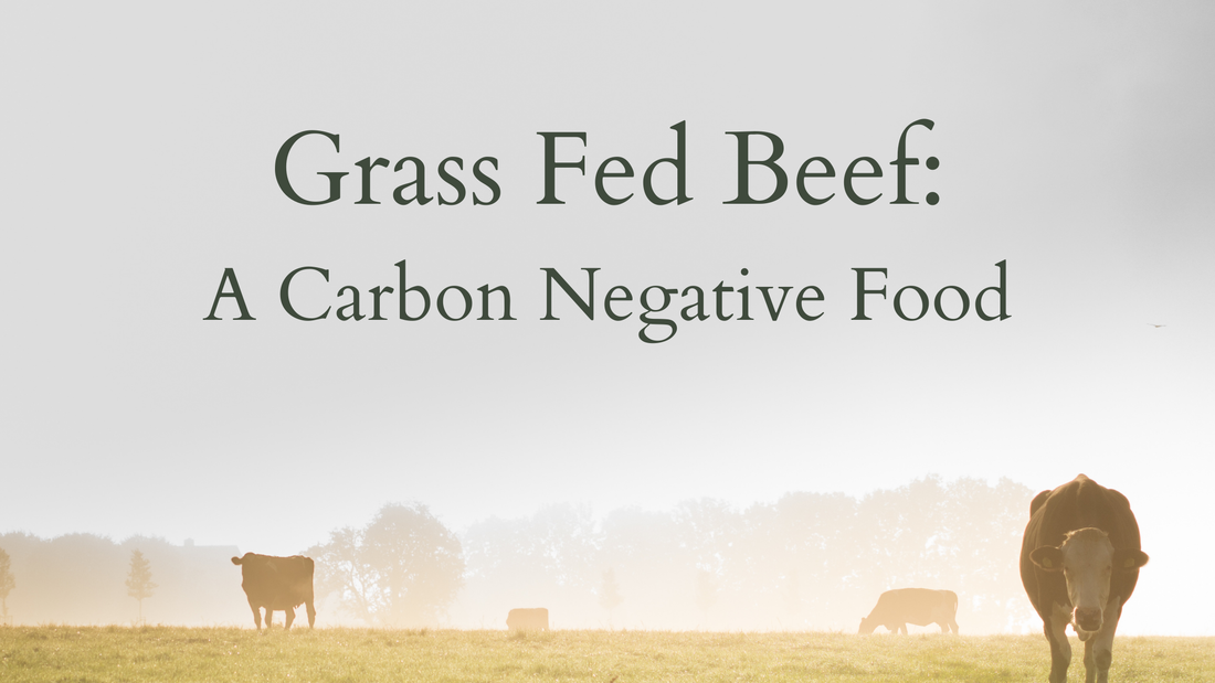 Grass fed Beef Carbon Negative Willow Farm LLC